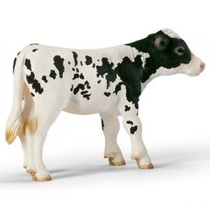 bw calf