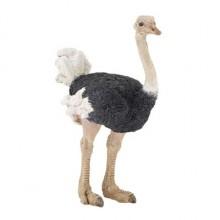 papo ostrich