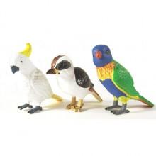 aust birds