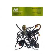 arachnid pack