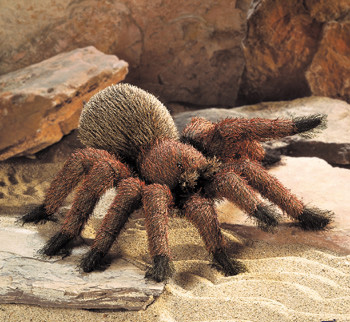tarantula puppet