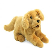 gr puppy puppet 2