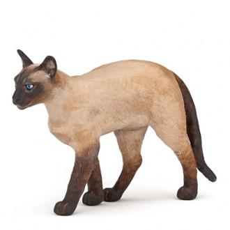 simese cat