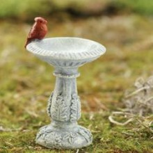 miniature_perching_cardinal_bird_bath_medium