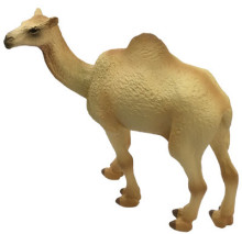 Science_and_Nature_Camel_75906__05403__99276.1487874479