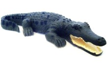 small_crocodile__74280__00077.1487845093